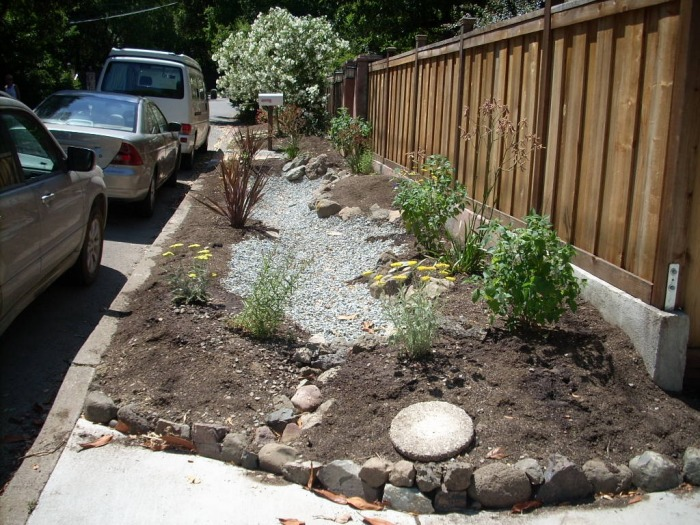 Rain Gardens Other Simple 1st Steps 10000 Rain Gardens Project