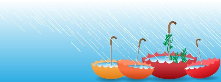 4674021 Rainwater Catchment